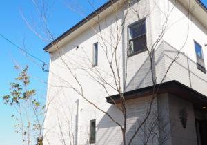 「ネクストの家」建売住宅:コモンフォレスト春日 福岡の注文住宅ならネクストライフデザイン イメージ